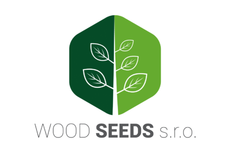 logo-wood-seeds